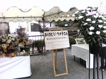 画像-0039.JPG